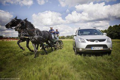 Horses vs Hyundai @ Warka / TopGear